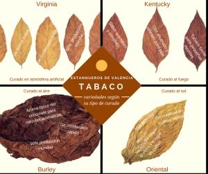 Variedades de tabaco según el tipo de curado